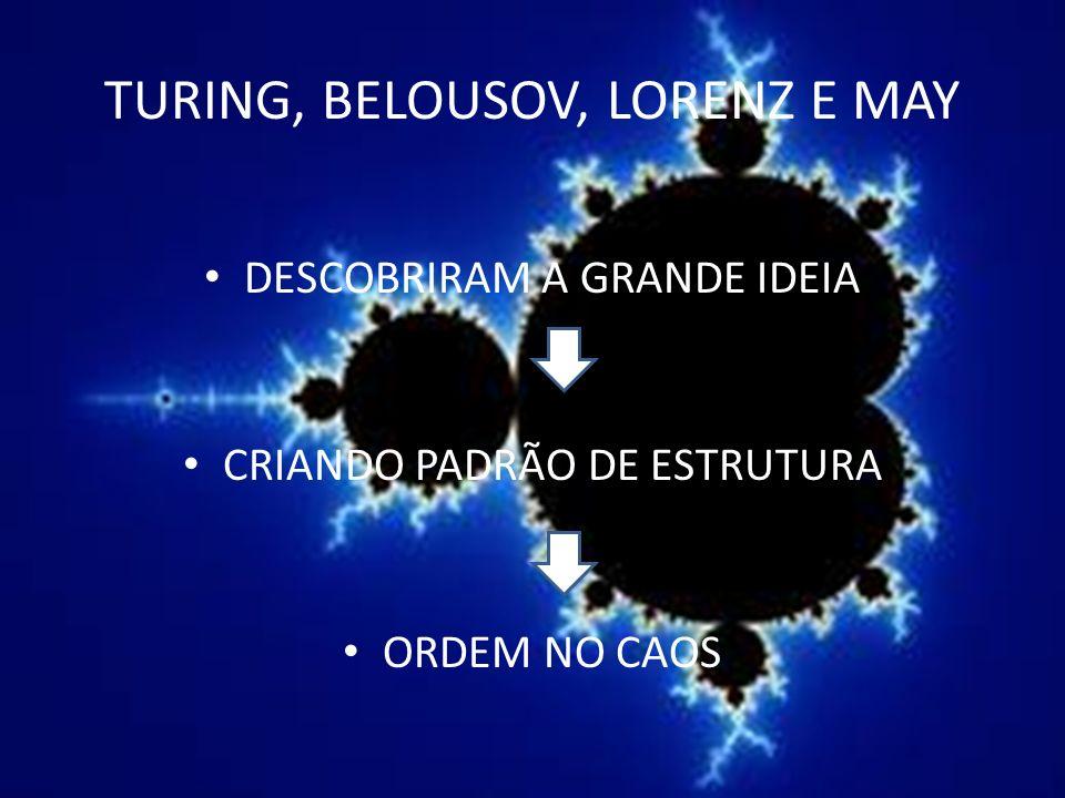 TURING, BELOUSOV, LORENZ E MAY DESCOBRIRAM A GRANDE IDEIA CRIANDO PADRÃO DE ESTRUTURA ORDEM NO CAOS