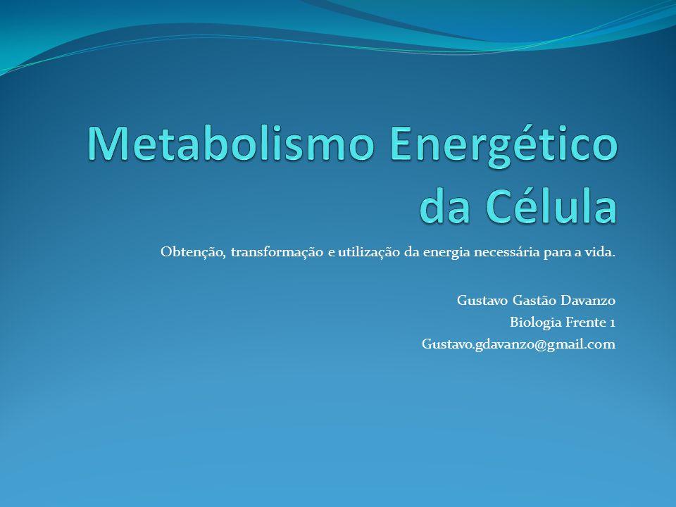 Obtenção, transformação e utilização da energia necessária para a vida. Gustavo Gastão Davanzo Biologia Frente 1 Gustavo.gdavanzo@gmail.com