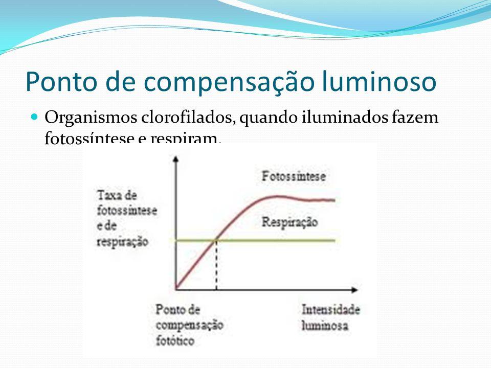Ponto de compensação luminoso Organismos clorofilados, quando iluminados fazem fotossíntese e respiram.
