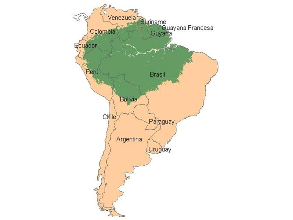 7,5 milhões de Km2 40 milhões de habitantes Maior bacia fluvial Maior e mais biodiversa floresta Dínamo acorrentado