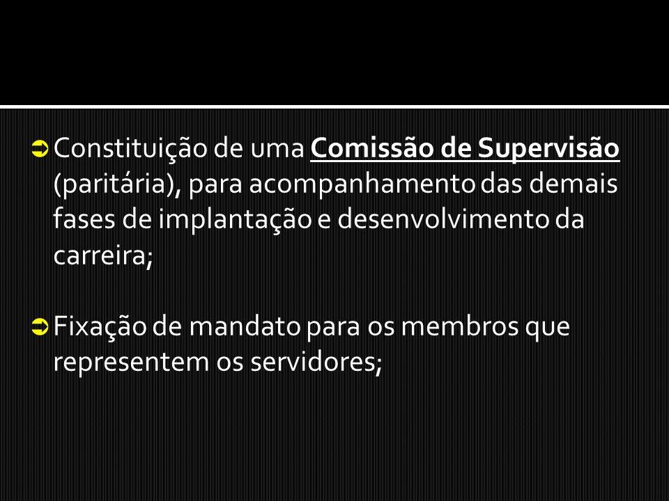 Constituição de uma Comissão de Supervisão (paritária), para acompanhamento das demais fases de implantação e desenvolvimento da carreira; Fixação de