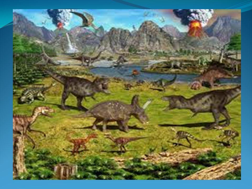As origens do ser humano têm sido discutidas há séculos e até hoje não existe um consenso sobre a questão.