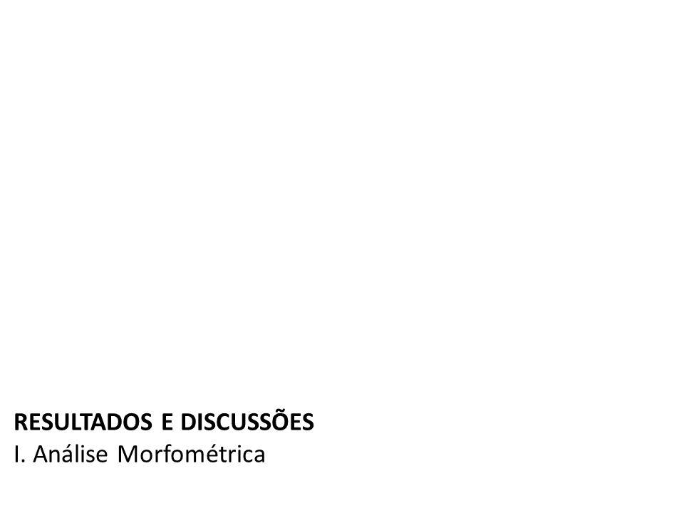 RESULTADOS E DISCUSSÕES I. Análise Morfométrica