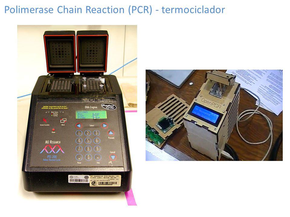 Polimerase Chain Reaction (PCR) - termociclador