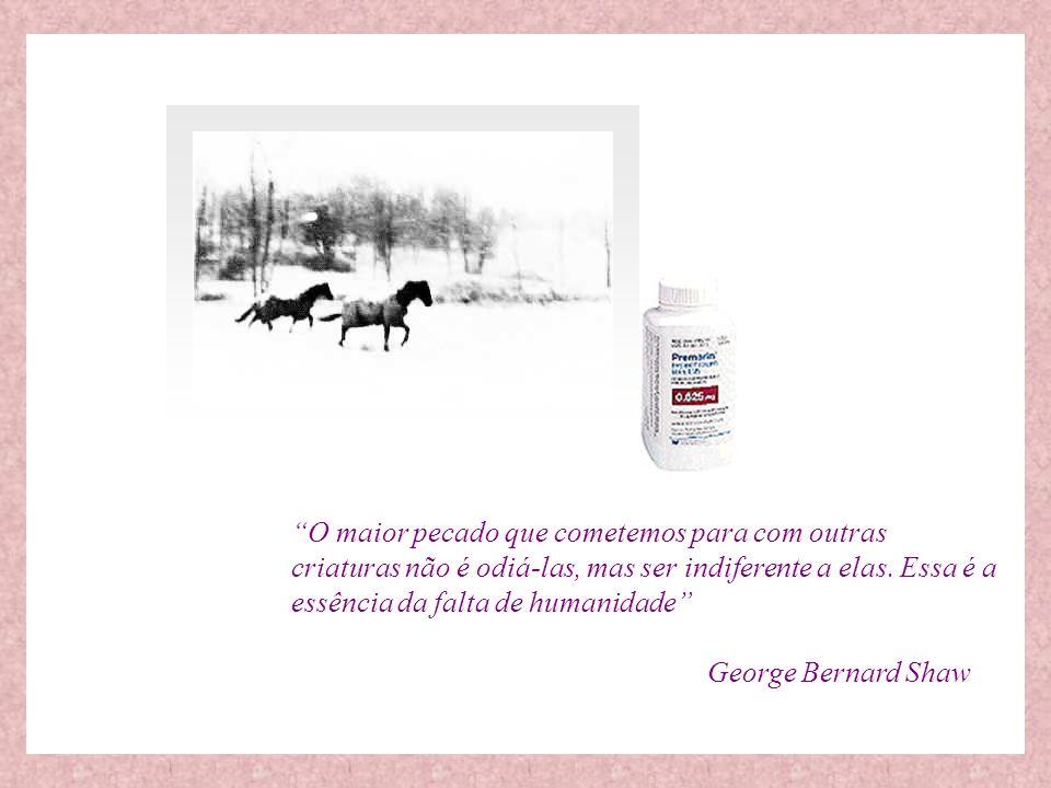 Por mais irreal que possa parecer, uma das drogas mais prescritas nos EUA e no Brasil é feita a partir de urina de éguas grávidas.