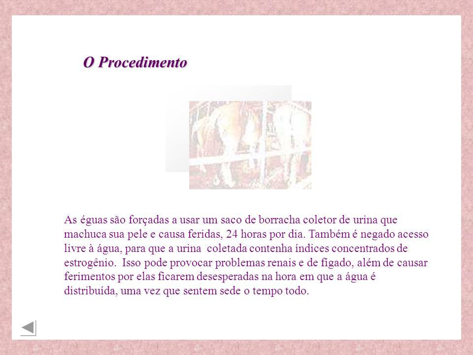 http://www.geocities.com/RainForest/Vines/5011/premarin.html http://www.saudenainternet.com.br/saudedamulher/saudedamulher_16b.shtm http://www.geocities.com/Petsburgh/Zoo/5542/ http://www.organon.com.br/ar_med/rephorm_med/ovestrion.htm http://www.healing-tao.com.br/artigos/menopausa.html http://animalrights.about.com/newsissues/animalrights/cs/premarin/ http://209.1.224.13/Heartland/Ranch/8841/premarin.html zttp://www.ecospirituality.com/boycott.htm http://www.menopauseonline.org http://hsus.org/current/index.html http://www.equus.org/premarin.htm http://www.veg.on.ca/lifelines/janfeb/horse.htm http://www.jps.net/jackieg/articles/sep12-1998g.html http://www.lef.org/magazine/mag99/june99-report1.htmlBibliografia: