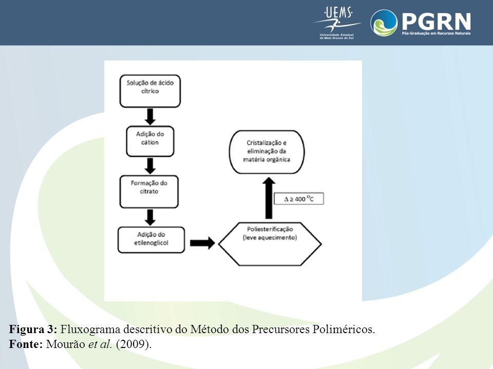 Figura 3: Fluxograma descritivo do Método dos Precursores Poliméricos. Fonte: Mourão et al. (2009).