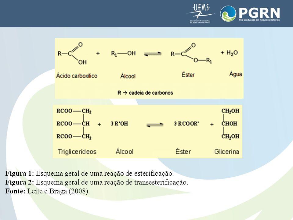 Figura 1: Esquema geral de uma reação de esterificação. Figura 2: Esquema geral de uma reação de transesterificação. Fonte: Leite e Braga (2008).