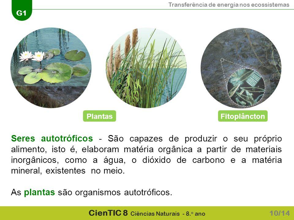Transferência de energia nos ecossistemas G1 CienTIC 8 Ciências Naturais - 8. o ano 10/14 Seres autotróficos - São capazes de produzir o seu próprio a