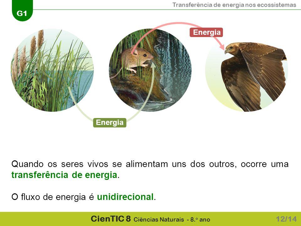 Transferência de energia nos ecossistemas G1 CienTIC 8 Ciências Naturais - 8. o ano Quando os seres vivos se alimentam uns dos outros, ocorre uma tran