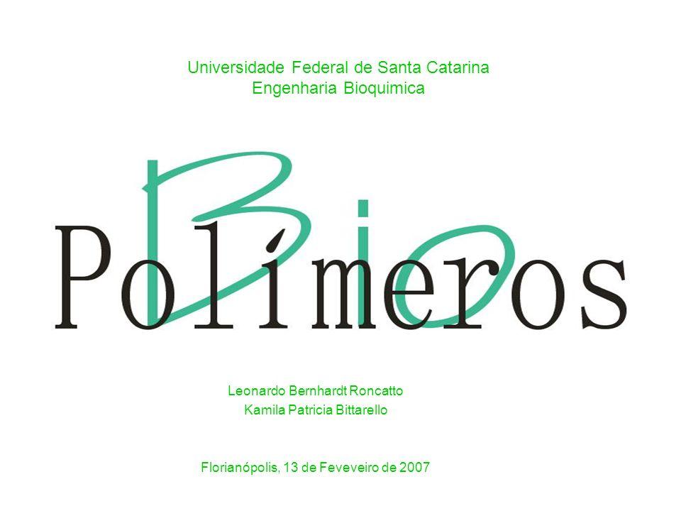 Leonardo Bernhardt Roncatto Kamila Patricia Bittarello Florianópolis, 13 de Feveveiro de 2007 Universidade Federal de Santa Catarina Engenharia Bioquimica