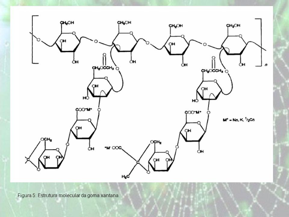Figura 5: Estrutura molecular da goma xantana.