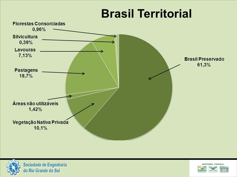 Brasil Territorial Brasil Preservado 61,3% Vegetação Nativa Privada 10,1% Áreas não utilizáveis 1,42% Pastagens 18,7% Lavouras 7,13% Silvicultura 0,39% Florestas Consorciadas 0,96%