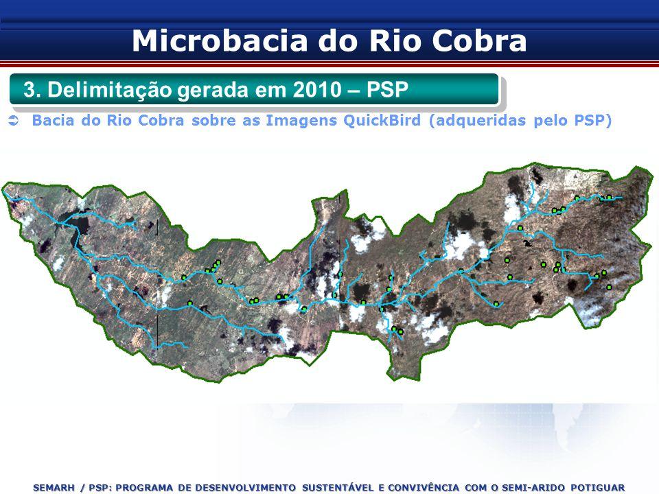 SEMARH / PSP: PROGRAMA DE DESENVOLVIMENTO SUSTENTÁVEL E CONVIVÊNCIA COM O SEMI-ARIDO POTIGUAR Bacia do Rio Cobra sobre as Imagens QuickBird (adquerida