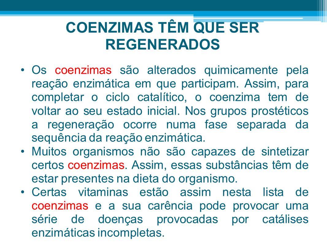 COENZIMAS TÊM QUE SER REGENERADOS Os coenzimas são alterados quimicamente pela reação enzimática em que participam. Assim, para completar o ciclo cata