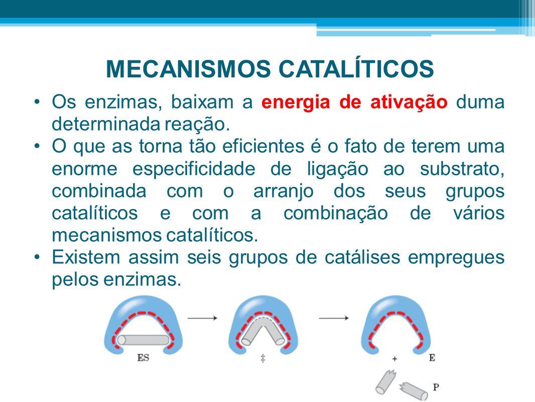 MECANISMOS CATALÍTICOS Os enzimas, baixam a energia de ativação duma determinada reação. O que as torna tão eficientes é o fato de terem uma enorme es
