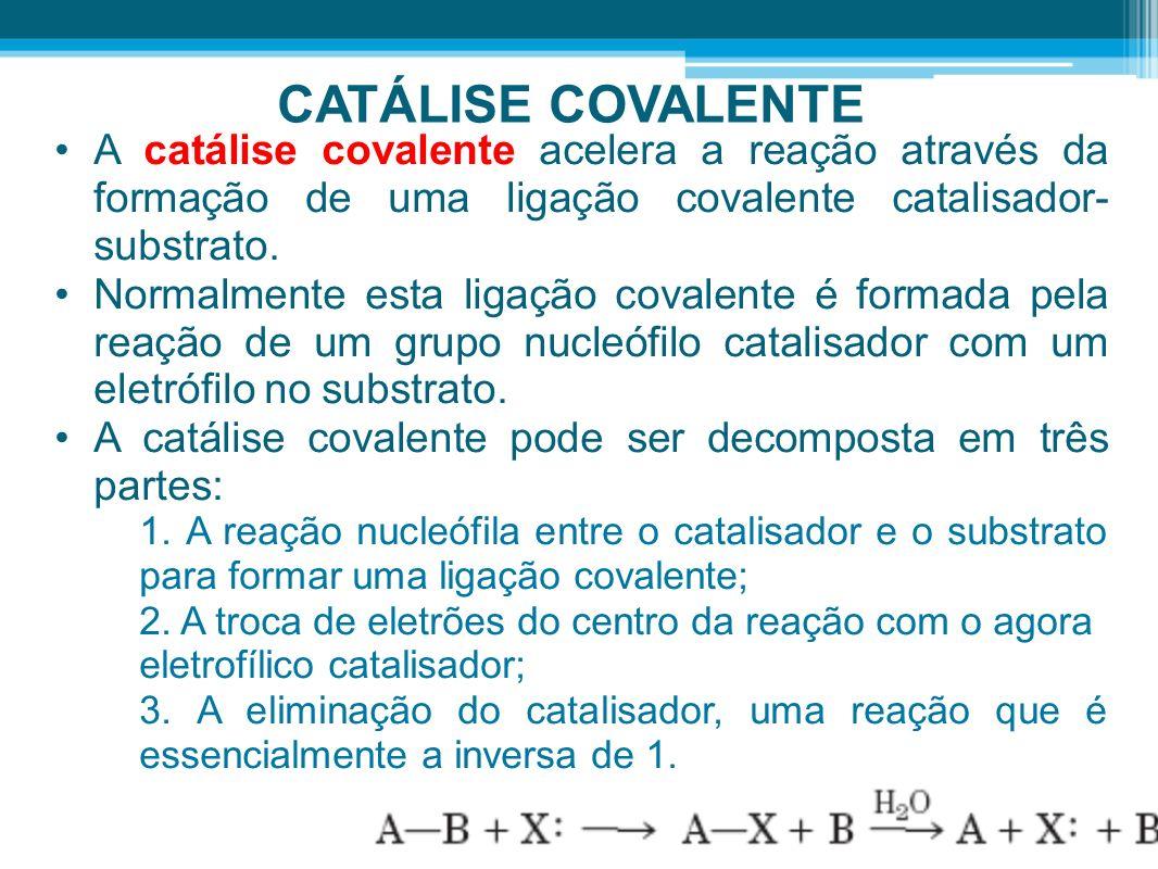 CATÁLISE COVALENTE A catálise covalente acelera a reação através da formação de uma ligação covalente catalisador- substrato. Normalmente esta ligação