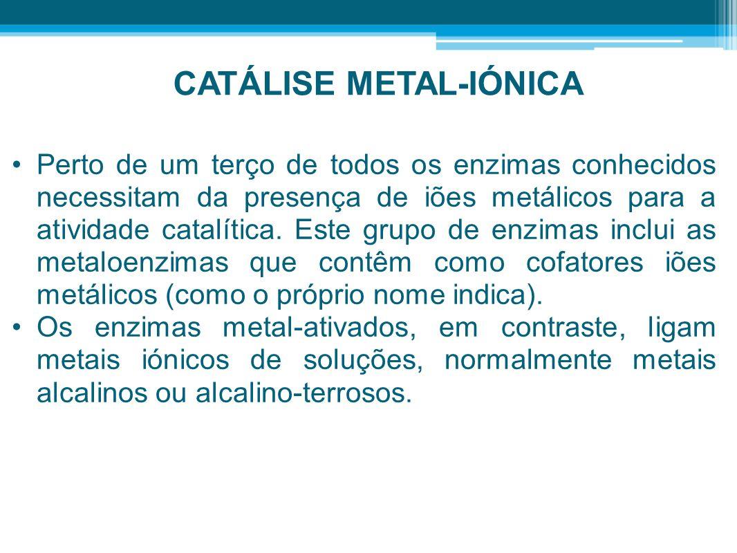 CATÁLISE METAL-IÓNICA Perto de um terço de todos os enzimas conhecidos necessitam da presença de iões metálicos para a atividade catalítica. Este grup
