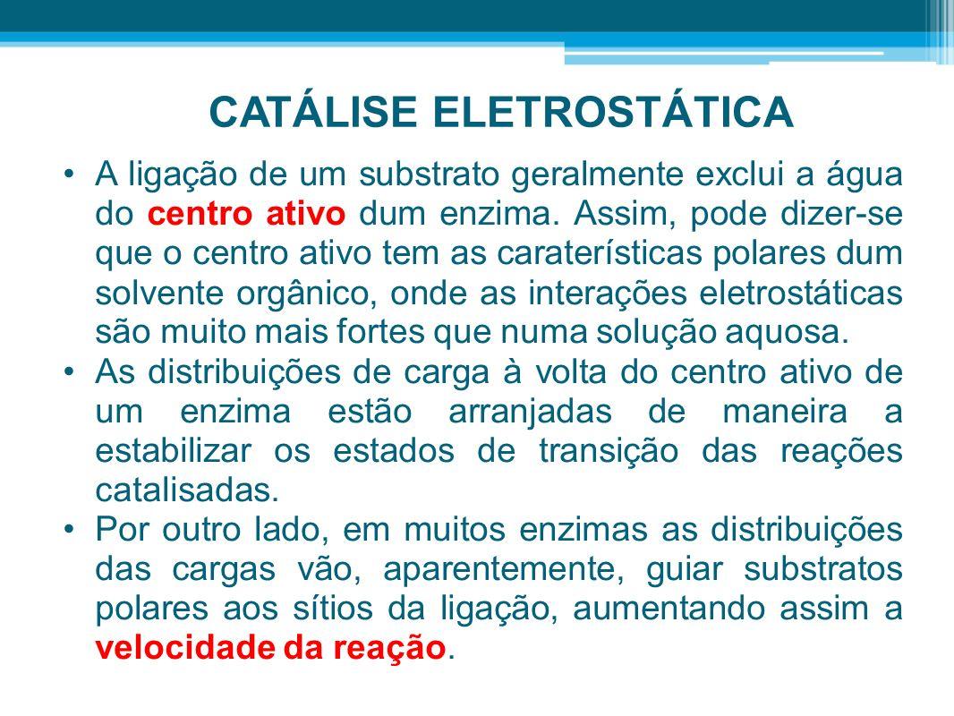 CATÁLISE ELETROSTÁTICA A ligação de um substrato geralmente exclui a água do centro ativo dum enzima. Assim, pode dizer-se que o centro ativo tem as c