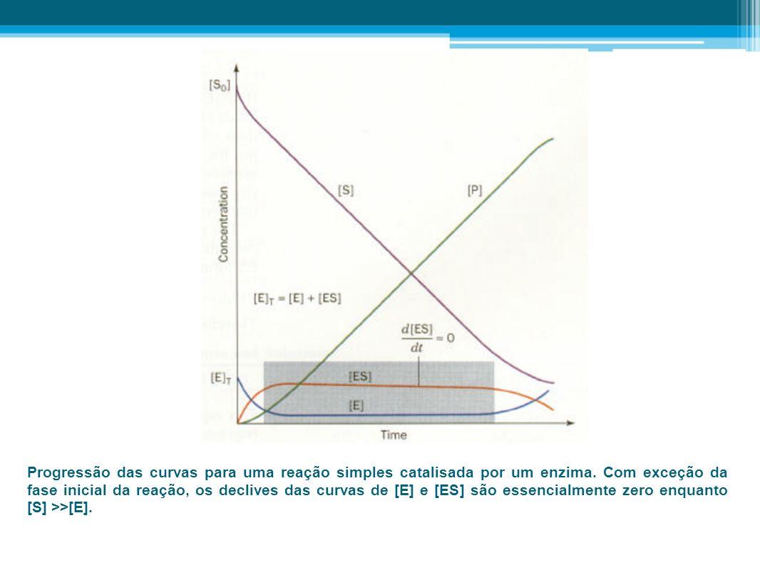 Progressão das curvas para uma reação simples catalisada por um enzima. Com exceção da fase inicial da reação, os declives das curvas de [E] e [ES] sã