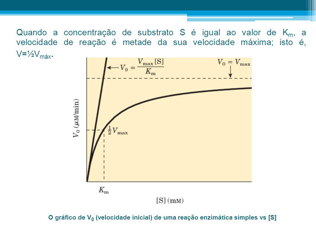 O gráfico de V 0 (velocidade inicial) de uma reação enzimática simples vs [S] Quando a concentração de substrato S é igual ao valor de K m, a velocida