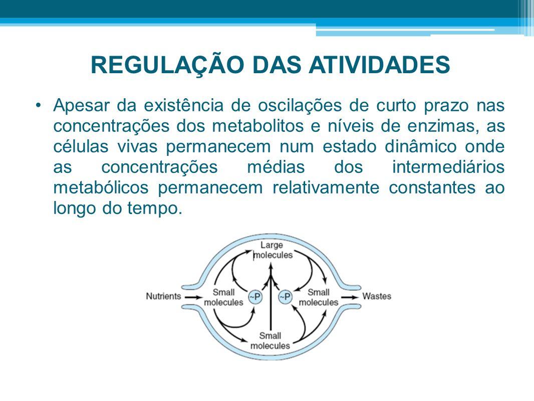REGULAÇÃO DAS ATIVIDADES Apesar da existência de oscilações de curto prazo nas concentrações dos metabolitos e níveis de enzimas, as células vivas per