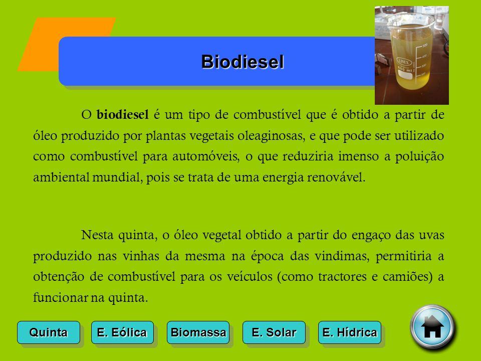 Quinta Biodiesel Biomassa E.Solar E. Solar E. Solar E.