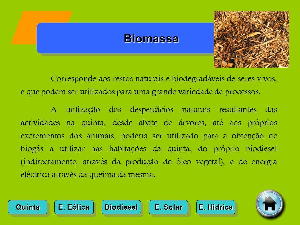 Quinta E.Eólica E. Eólica E. Eólica E. Eólica Biomassa Biodiesel E.