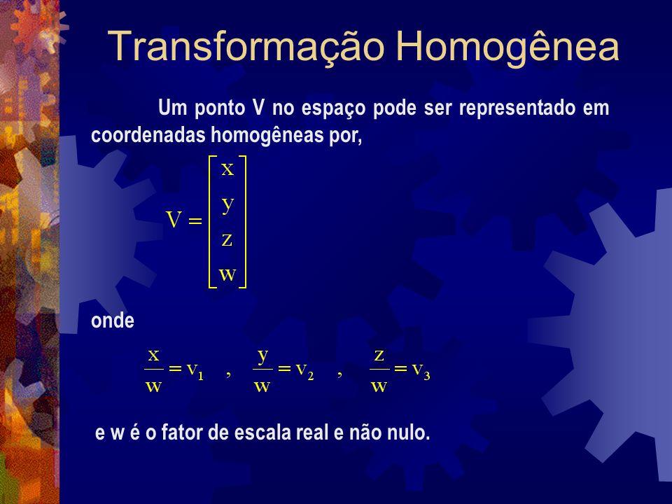 Transformação Homogênea Um ponto V no espaço pode ser representado em coordenadas homogêneas por, onde e w é o fator de escala real e não nulo.