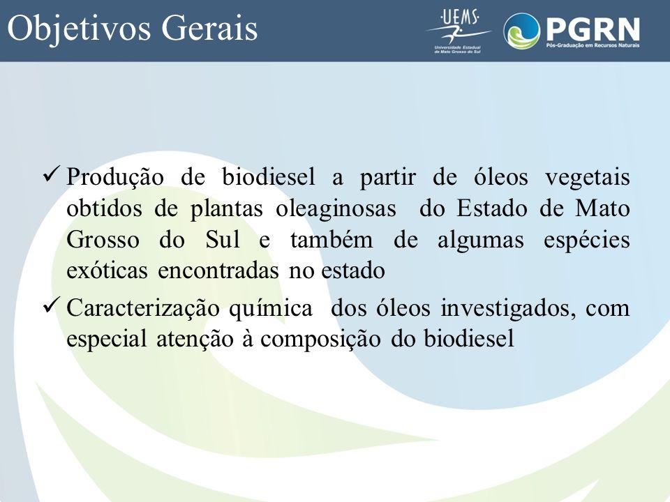 Objetivos Gerais Produção de biodiesel a partir de óleos vegetais obtidos de plantas oleaginosas do Estado de Mato Grosso do Sul e também de algumas e