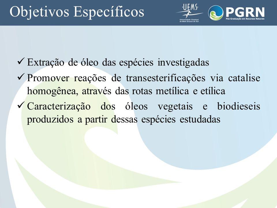 Objetivos Específicos Extração de óleo das espécies investigadas Promover reações de transesterificações via catalise homogênea, através das rotas met