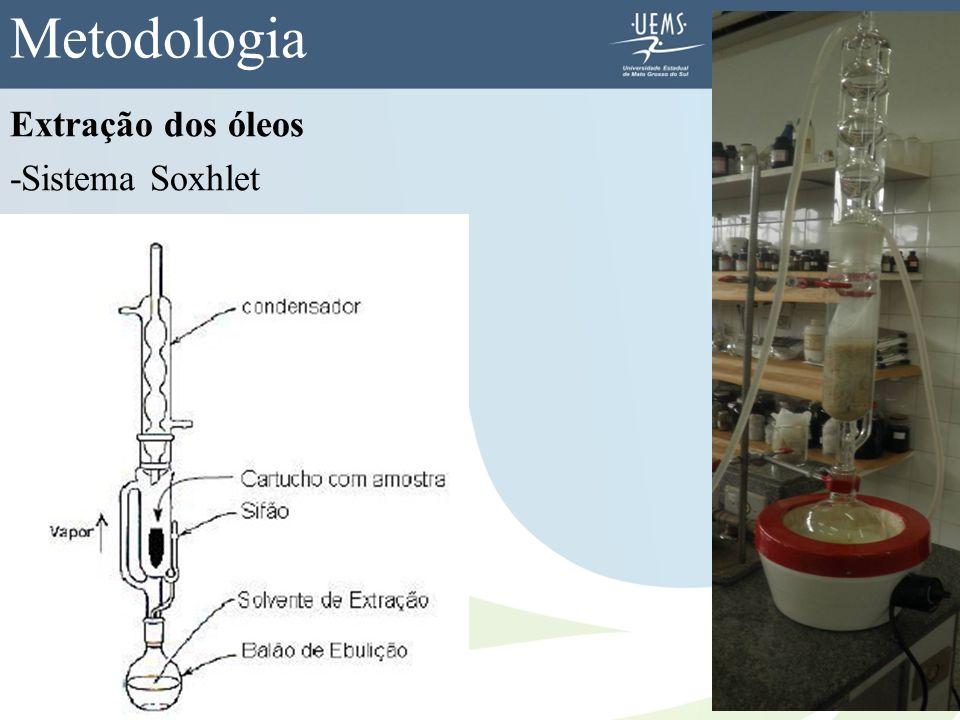 Extração dos óleos -Sistema Soxhlet