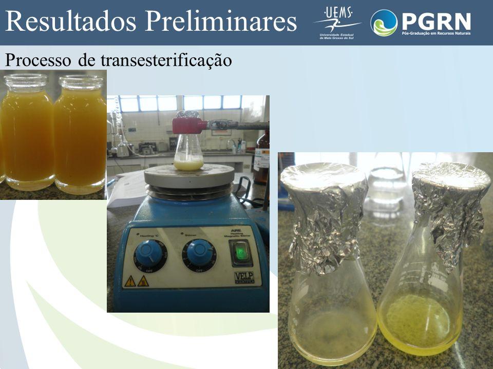 Processo de transesterificação Resultados Preliminares
