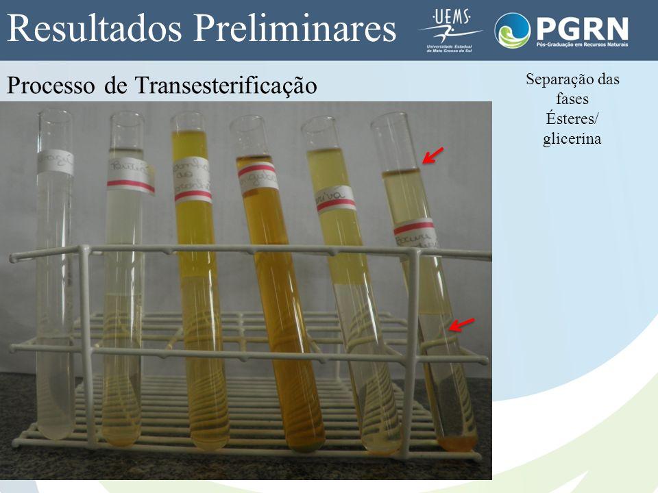 Separação das fases Ésteres/ glicerina Processo de Transesterificação Resultados Preliminares
