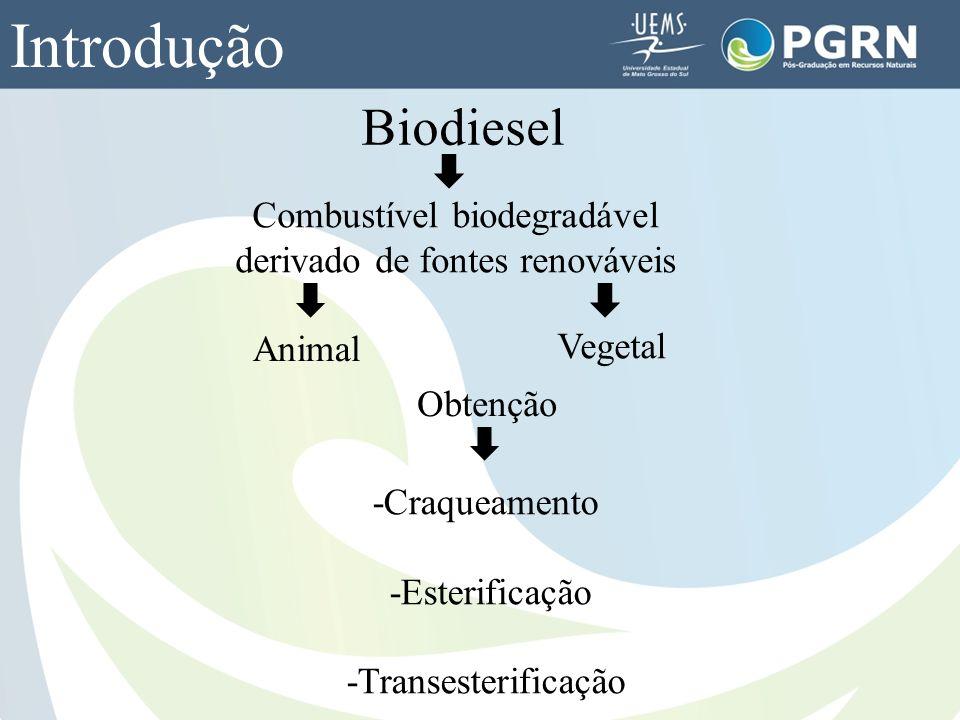 Biodiesel Introdução Combustível biodegradável derivado de fontes renováveis Obtenção Animal Vegetal -Craqueamento -Esterificação -Transesterificação