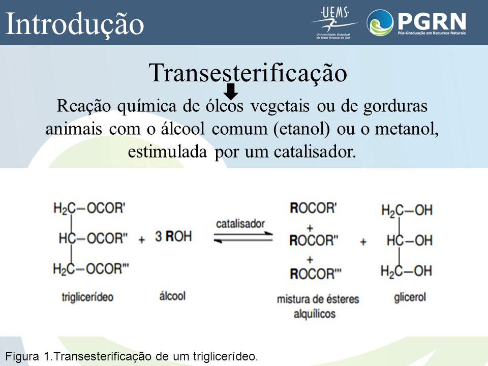 Transesterificação Reação química de óleos vegetais ou de gorduras animais com o álcool comum (etanol) ou o metanol, estimulada por um catalisador. In
