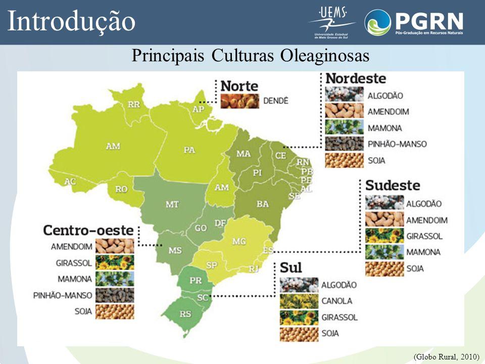 Introdução Principais Culturas Oleaginosas (Globo Rural, 2010)