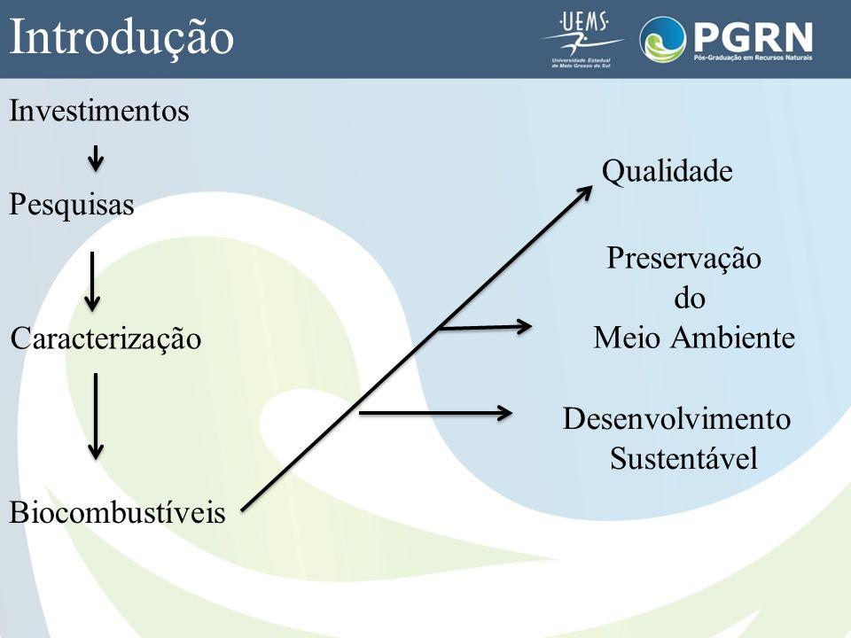 Introdução Investimentos Pesquisas Caracterização Biocombustíveis Qualidade Preservação do Meio Ambiente Desenvolvimento Sustentável