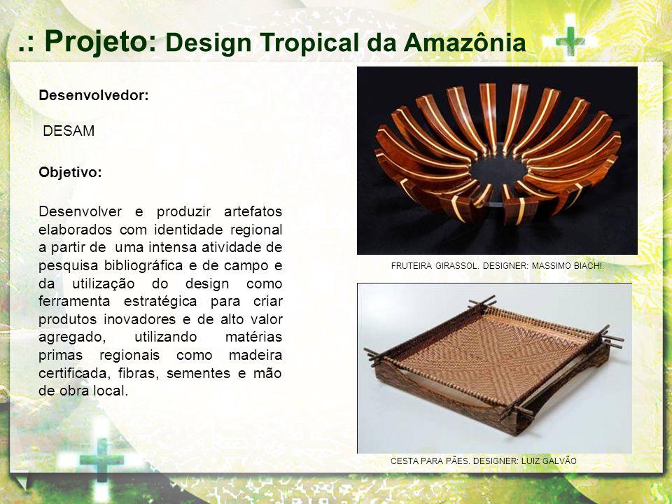 Desenvolvedor: DESAM Objetivo: Desenvolver e produzir artefatos elaborados com identidade regional a partir de uma intensa atividade de pesquisa bibli