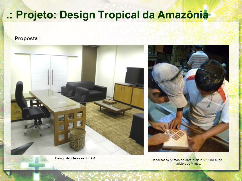 .: Projeto: Design Tropical da Amazônia Proposta | Capacitação de mão-de-obra, projeto APROREM no município de Maués. Design de interiores, FIEAM.