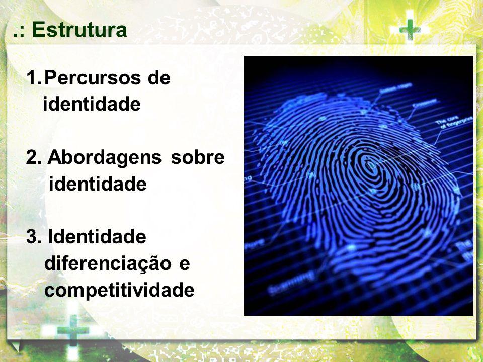 1.Percursos de identidade 2. Abordagens sobre identidade 3. Identidade diferenciação e competitividade.: Estrutura