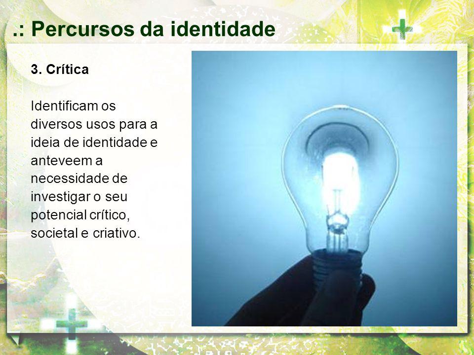 3. Crítica Identificam os diversos usos para a ideia de identidade e anteveem a necessidade de investigar o seu potencial crítico, societal e criativo