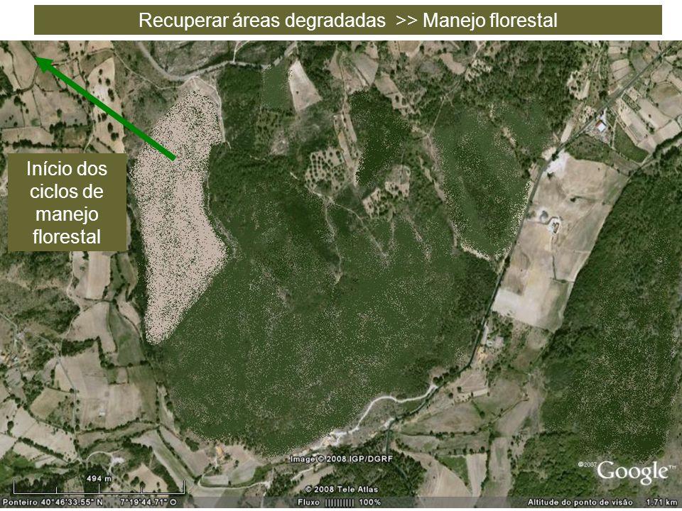 Recuperar áreas degradadas >> Manejo florestal Início dos ciclos de manejo florestal