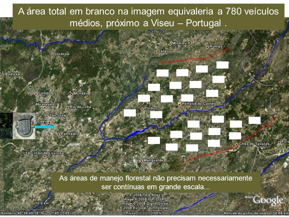A área total em branco na imagem equivaleria a 780 veículos médios, próximo a Viseu – Portugal.