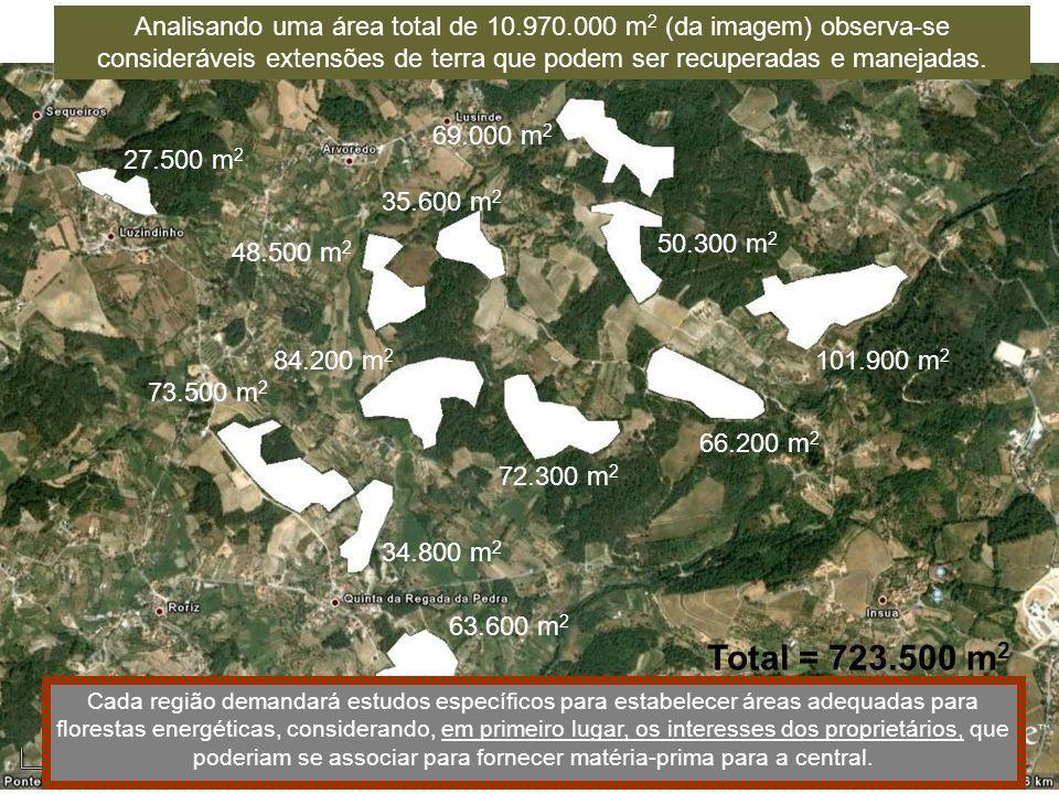27.500 m 2 73.500 m 2 34.800 m 2 63.600 m 2 84.200 m 2 48.500 m 2 35.600 m 2 69.000 m 2 50.300 m 2 101.900 m 2 66.200 m 2 72.300 m 2 Total = 723.500 m 2 Analisando uma área total de 10.970.000 m 2 (da imagem) observa-se consideráveis extensões de terra que podem ser recuperadas e manejadas.