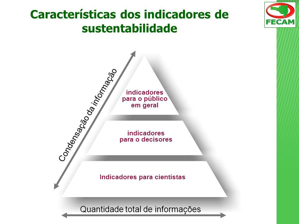 indicadores para o público em geral indicadores para o decisores Indicadores para cientistas Quantidade total de informações Condensação da informação