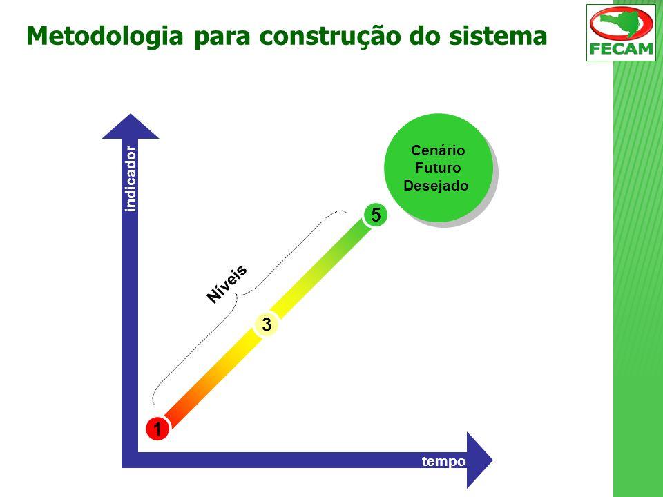 1 3 5 Cenário Futuro Desejado Cenário Futuro Desejado tempo indicador Níveis Metodologia para construção do sistema