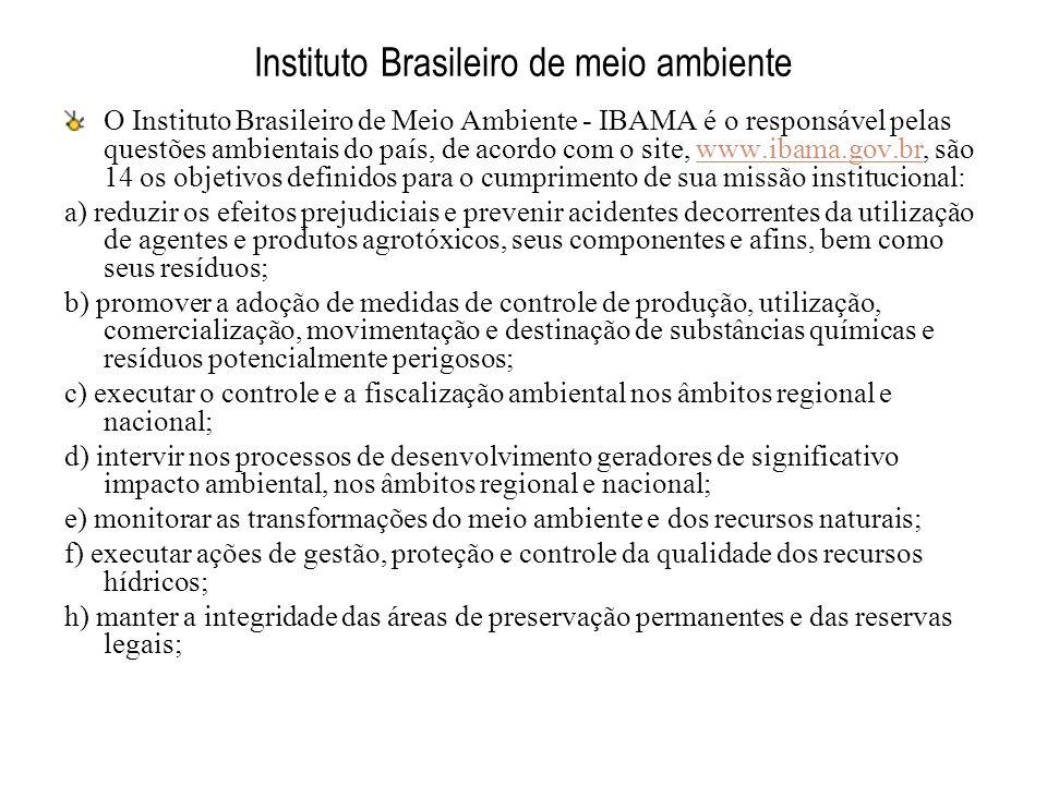 Instituto Brasileiro de meio ambiente O Instituto Brasileiro de Meio Ambiente - IBAMA é o responsável pelas questões ambientais do país, de acordo com
