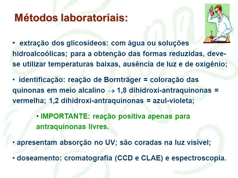 Métodos laboratoriais: extração dos glicosídeos: com água ou soluções hidroalcoólicas; para a obtenção das formas reduzidas, deve- se utilizar tempera
