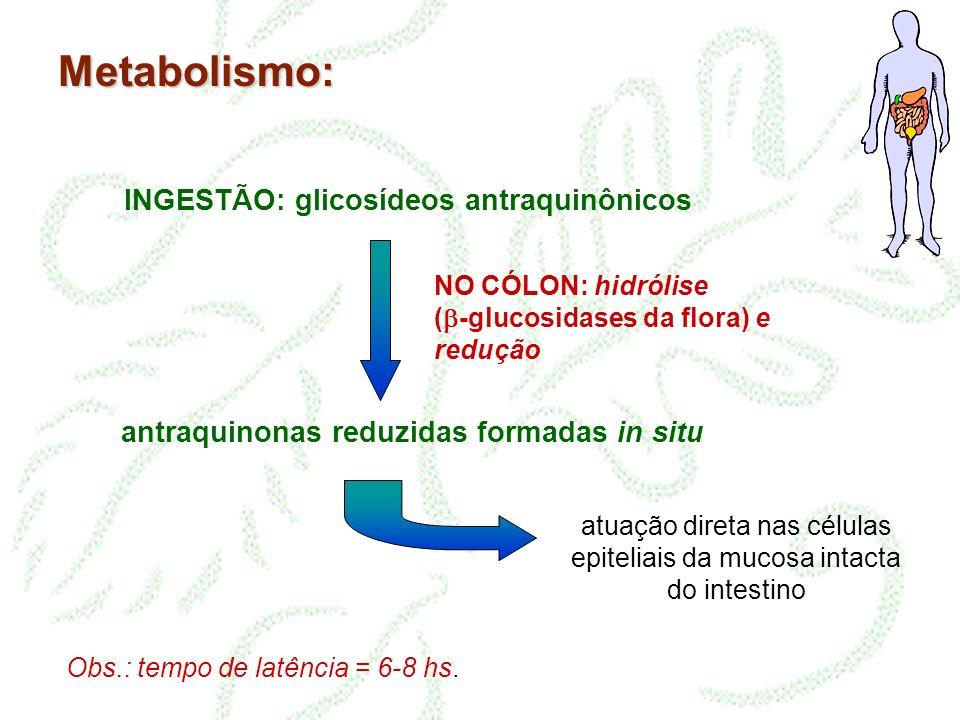 Metabolismo: INGESTÃO: glicosídeos antraquinônicos antraquinonas reduzidas formadas in situ atuação direta nas células epiteliais da mucosa intacta do